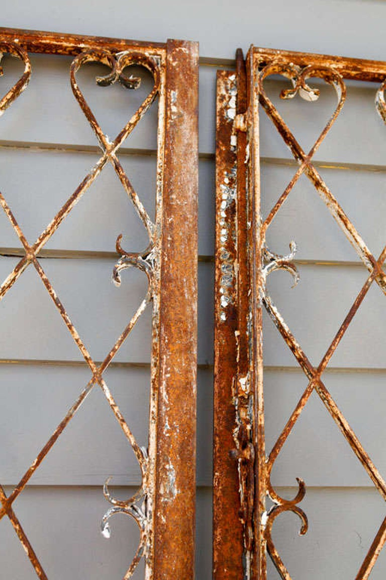 Tom, Embellish Pair of 19th Century French Garden Gates 'I have' For Sale 1