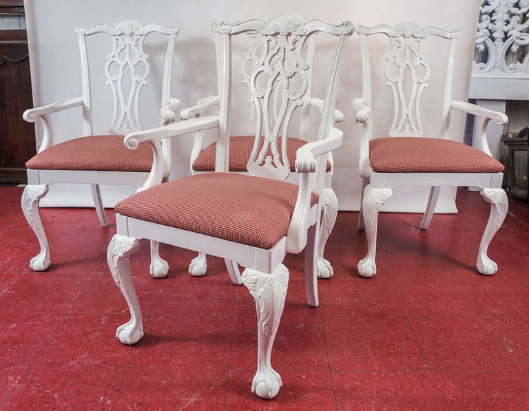 Classic Chippendale style dining armchairs with scroll backs and ball-in-claw feet.