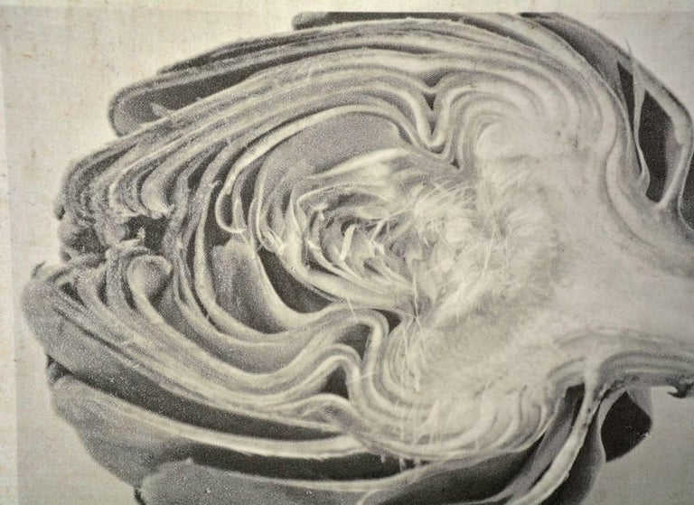 Caroline Kaars Sypesteyn of Berkshire Artisanal is the artist who has created this black-and-white photographic print on linen of a sliced artichoke. Titled