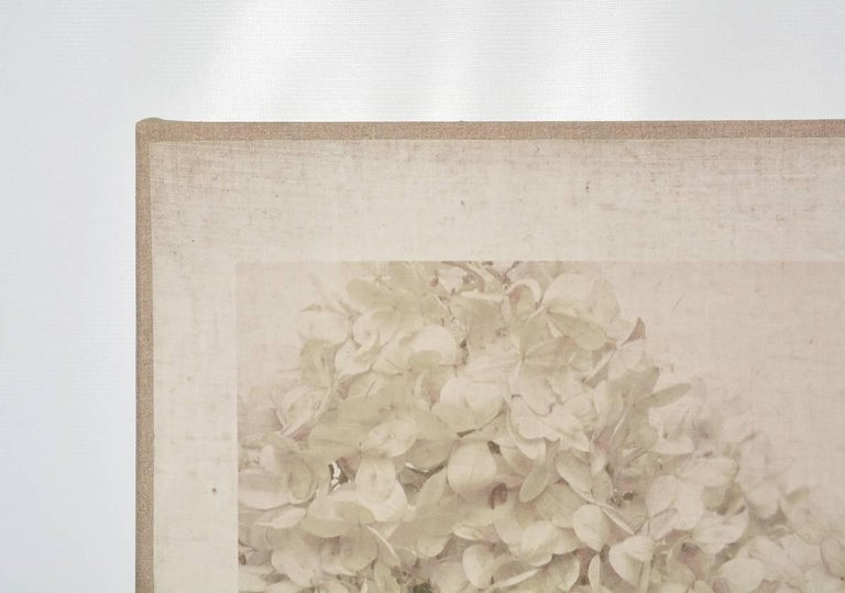 Caroline Kaars Sypesteyn of Berkshire Artisanal is the artist who has created this black-and-white photographic print on linen of hydrangeas. Titled