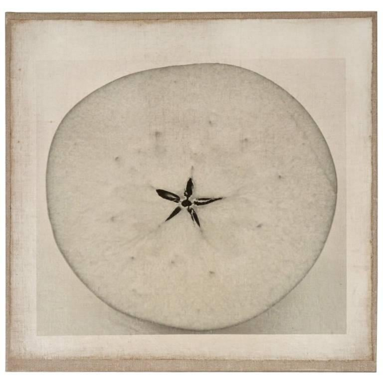 Contemporary Photograph of a Sliced Apple For Sale