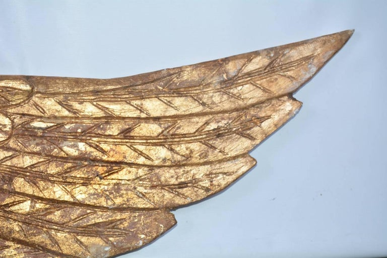 American Pair of Ornamental Carved Wood Gilded Angel Wings For Sale
