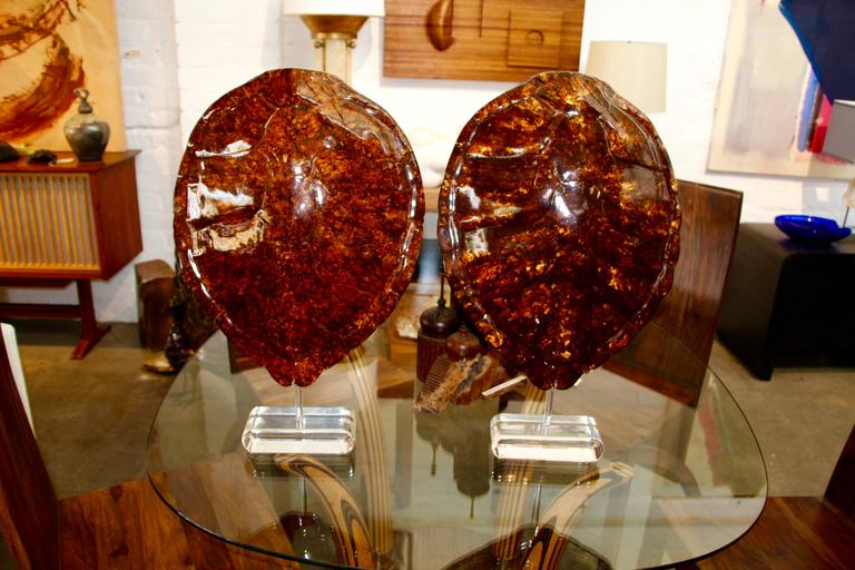 American  Pair of Resin Sea Turtles Mounted on Lucite Base by Jean Roy Designs For Sale