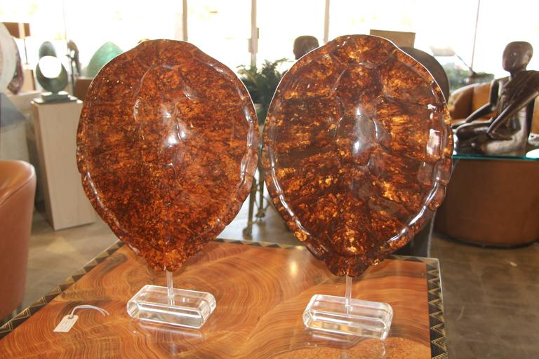Molded  Pair of Resin Sea Turtles Mounted on Lucite Base by Jean Roy Designs For Sale