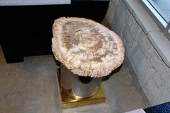 Petrified Wood Table with Brass and Chrome Base