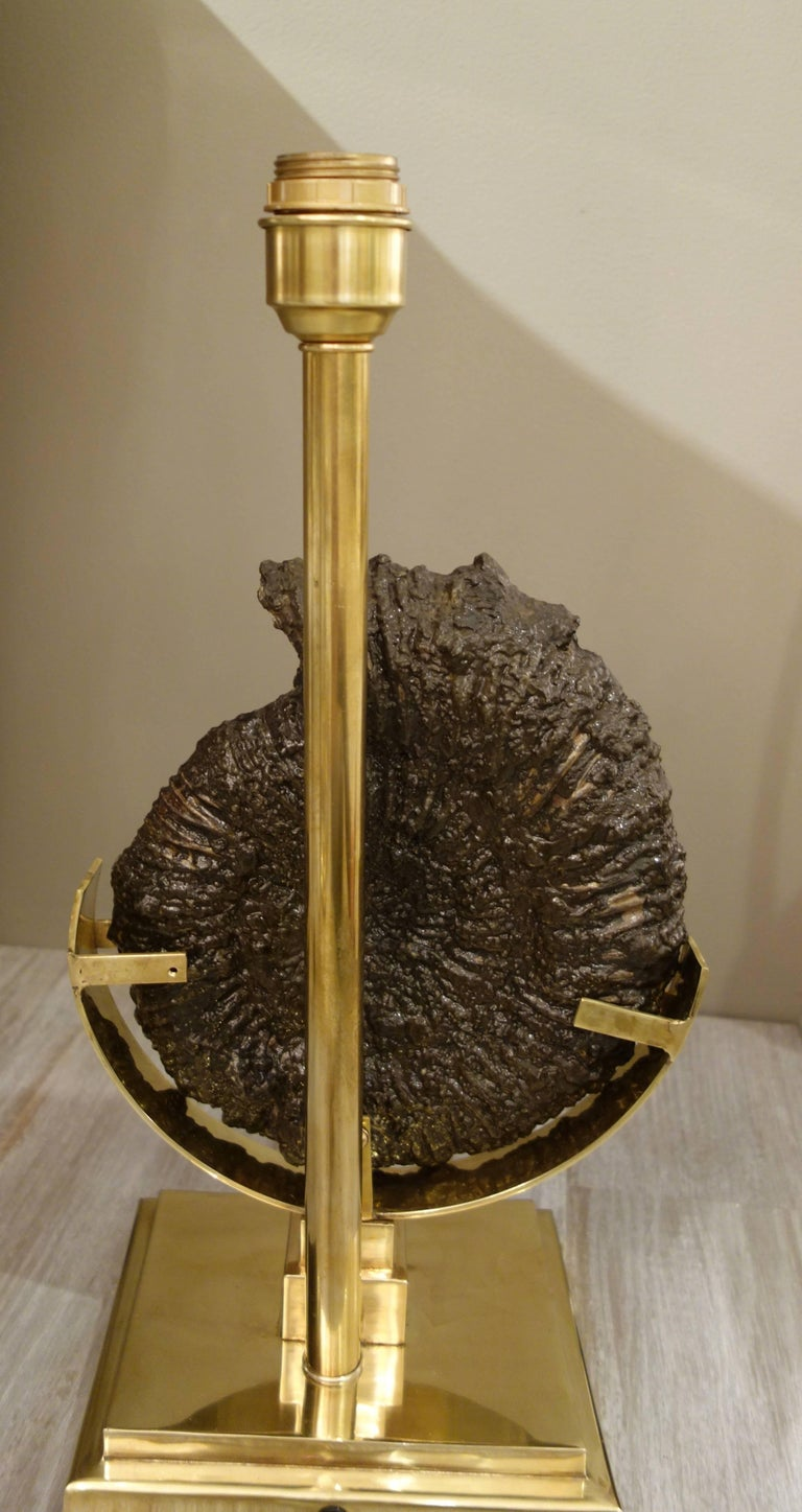 Pair of Dark Charcoal Gray and Gold Polished Ammonite Table Lamps on Brass Bases 6