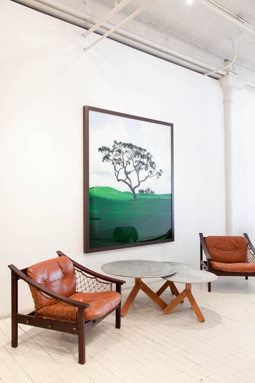 Vintage Amazonas Armchair by Jean Gillon 3