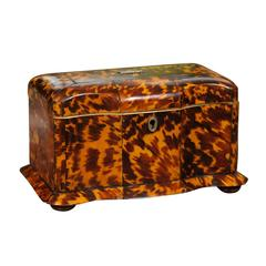 Early 19th Century English Regency Tortoiseshell Tea Caddy with Skirted Base