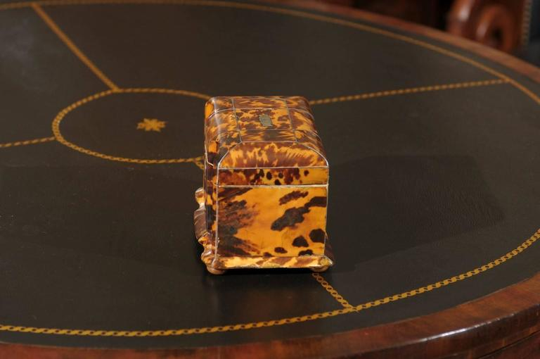 19th Century English Regency Tortoiseshell Tea Caddy For Sale 1