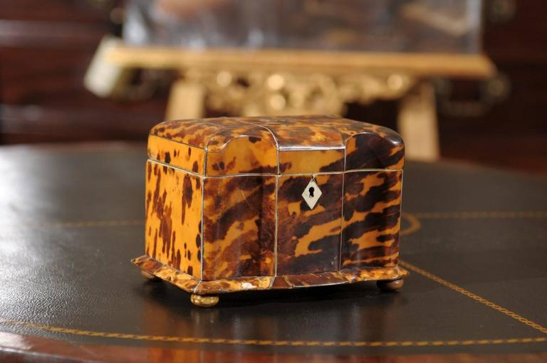Regency Period Tortoiseshell Tea Caddy with Bun Feet and Two (2) Compartments, England 19th Century