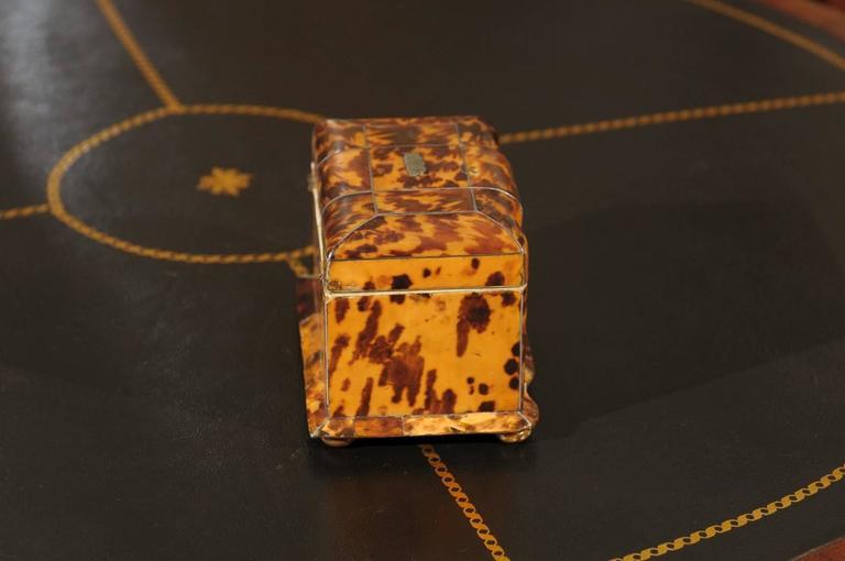 19th Century English Regency Tortoiseshell Tea Caddy For Sale 5