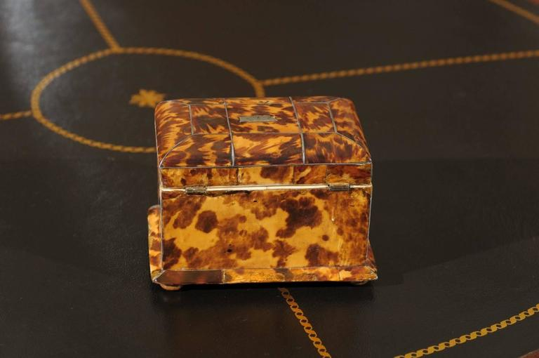 19th Century English Regency Tortoiseshell Tea Caddy For Sale 6