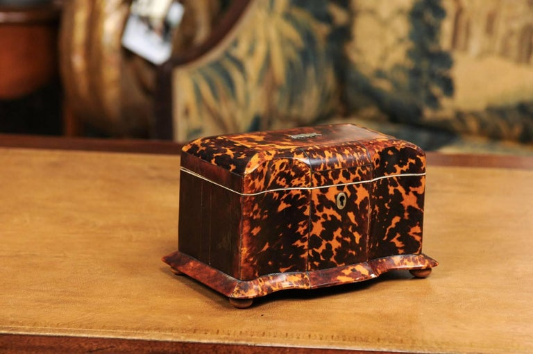 Regency period tortoiseshell tea caddy with skirted base and bun feet, England, early 19th century.