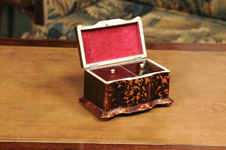 Tortoise Shell Early 19th Century English Regency Tortoiseshell Tea Caddy with Bun Feet For Sale