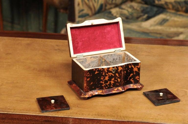 Early 19th Century English Regency Tortoiseshell Tea Caddy with Bun Feet For Sale 1