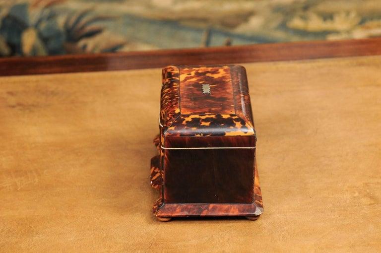 Early 19th Century English Regency Tortoiseshell Tea Caddy with Bun Feet For Sale 3