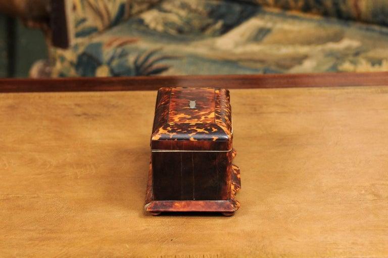 Early 19th Century English Regency Tortoiseshell Tea Caddy with Bun Feet For Sale 5