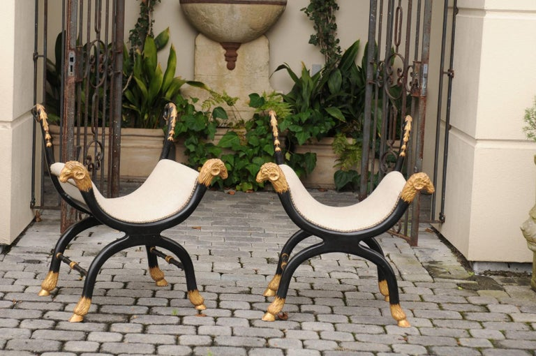 A pair of English Regency style ebonized and parcel-gilt Curule stools from the late 19th century with rams heads, hoofed feet, scrolling back supports and new upholstery. Born in the last quarter of the 19th century, each of this stunning pair of