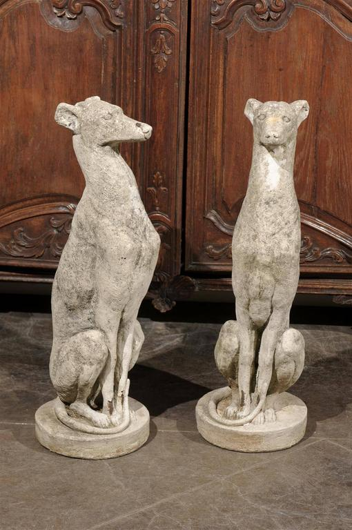 Hand Carved Cement : Pair of vintage carved cement greyhound sculptures sitting
