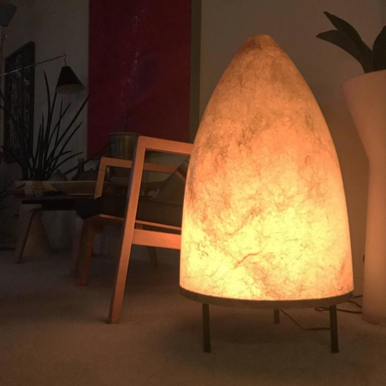 1950s California Modernist Fiberglass Floor or Table Lamp 9