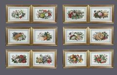 Set of Twelve Chinese Export Pith Paper Watercolor Botanicals