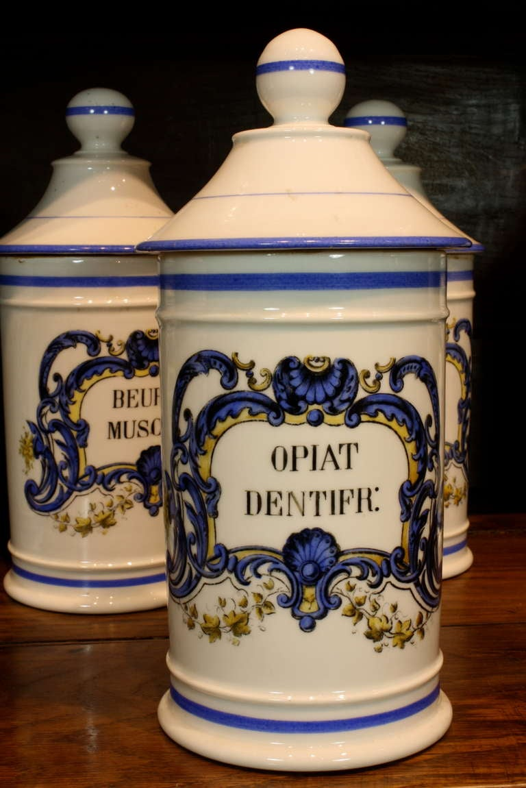 19th Century Set French Porcelain Apothecary Jars with Painted Decoration and Mark For Sale