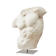 Large 1930s Plaster Replica of the Gaddi Torso on Stand