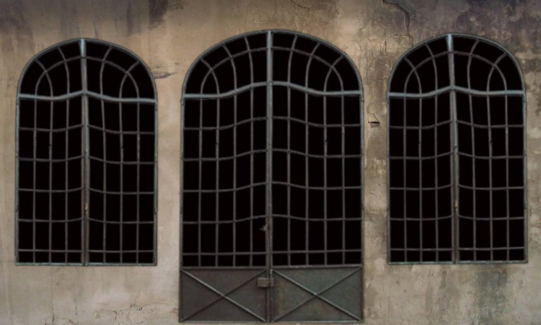 Iron Multi-Light Windows and Doors 2