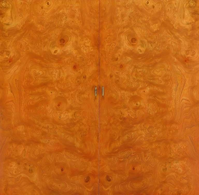 Rare Mastercraft Tangerine Amboyna Burl and Acid Etched Brass Wardrobe Cabinet 9