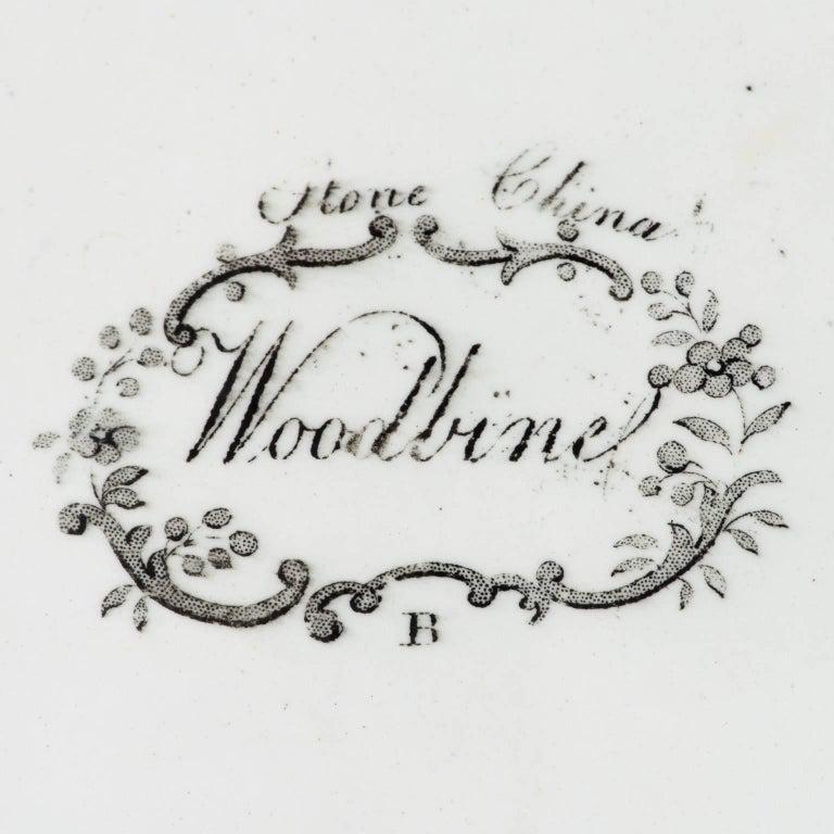 19th Century English Woodbine Pattern Transferware Foot-Tub For Sale 4