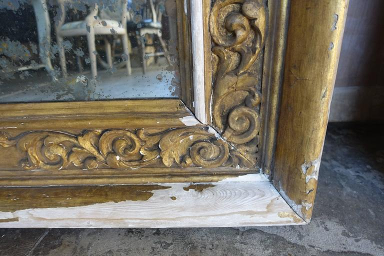Pair of 19th Century Italian Giltwood Mirrors For Sale 6