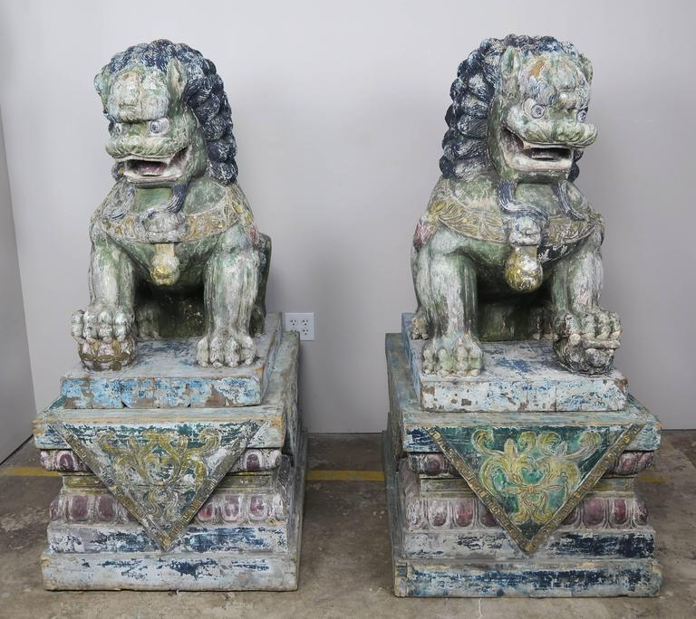 Pair of Chinese monumental carved wood painted Foo dogs. Beautiful worn painted finish in soft hues of blue, green, yellow and rose.