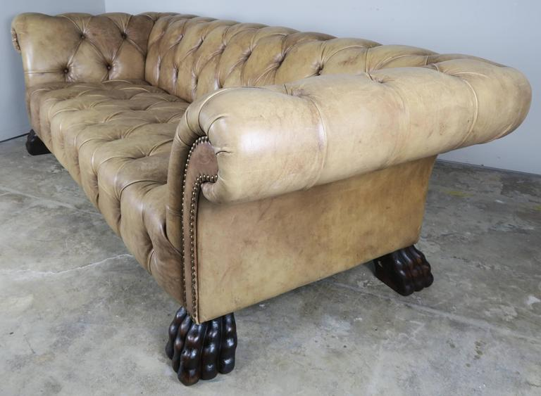 English Leather Chesterfield Style Sofa with Paw Feet at 1stdibs