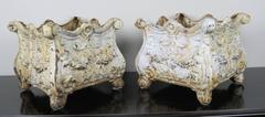 19th C. French Cast Iron Planters, Pair