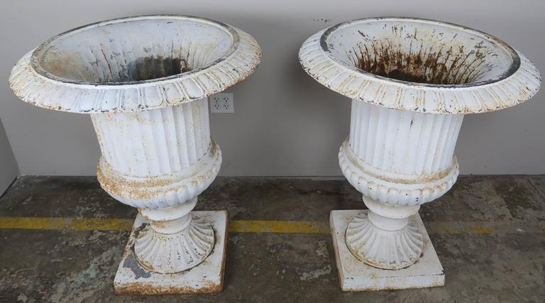 Monumental Painted Cast Iron Planters, Pair 3