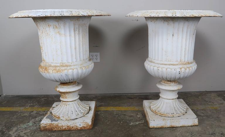 Monumental Painted Cast Iron Planters, Pair 2