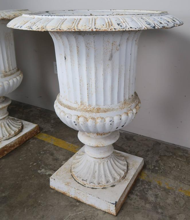 Monumental Painted Cast Iron Planters, Pair 5