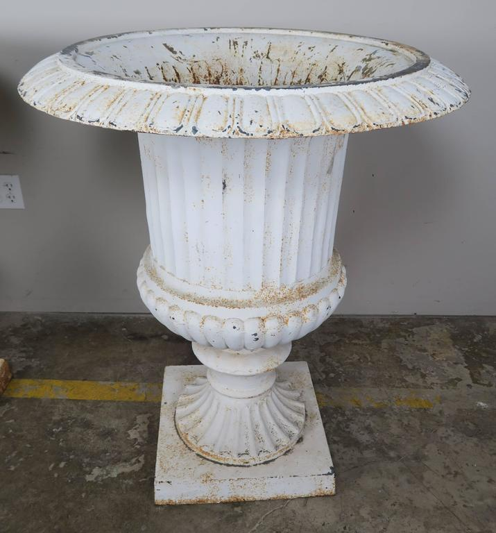 Monumental Painted Cast Iron Planters, Pair 4