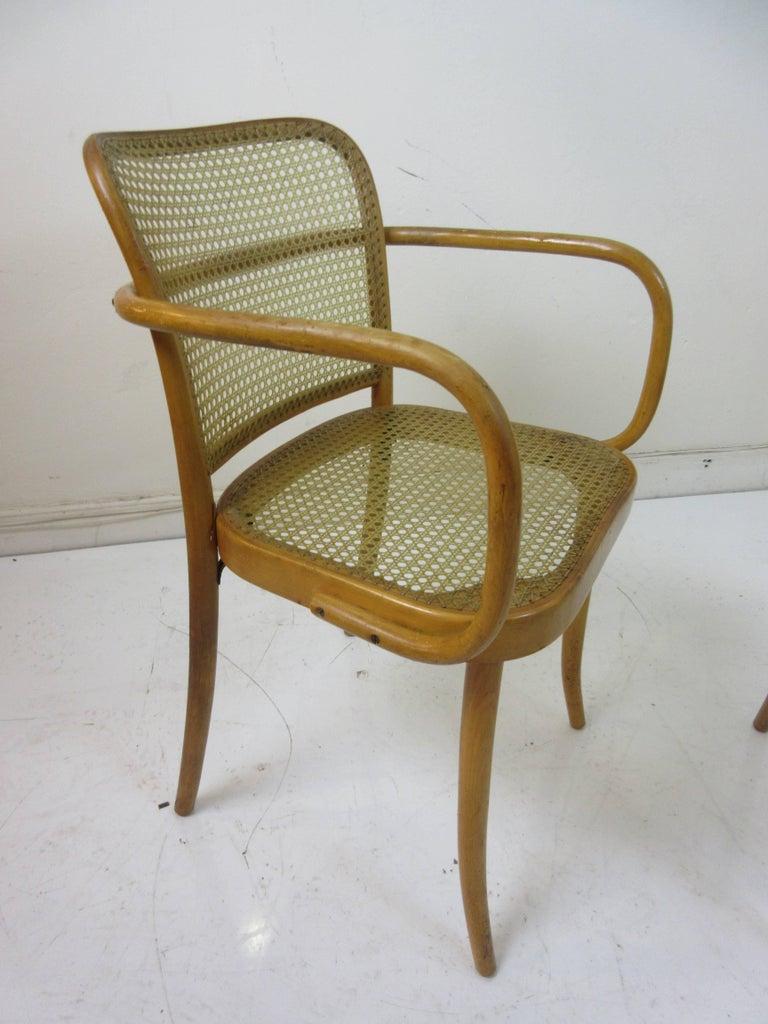 Czech Josef Hoffman Prague 811 Arm Chairs by Stendig  For Sale