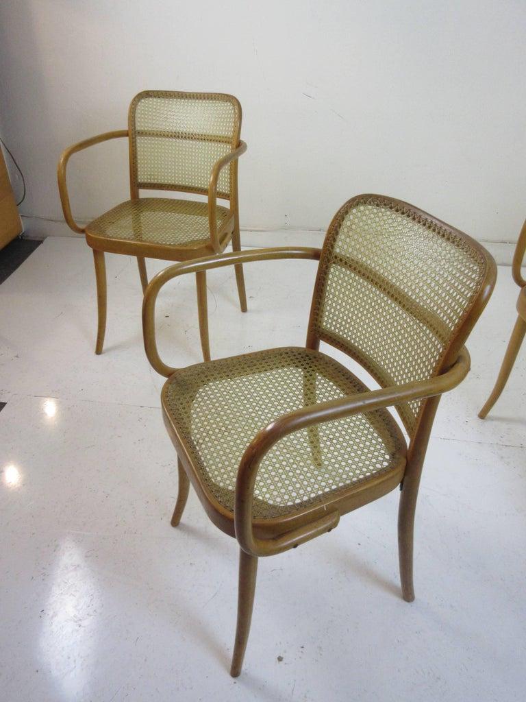 Josef Hoffman Prague 811 Arm Chairs by Stendig  For Sale 2