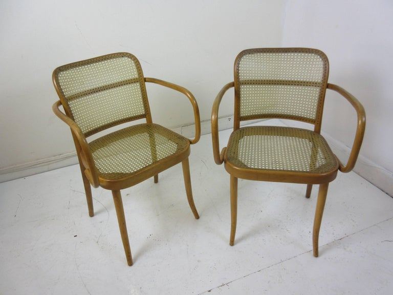 Josef Hoffman Prague 811 chairs by Stendig from the 1960s with hand tied nylon