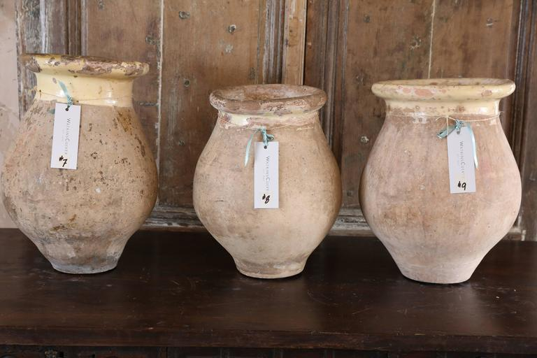 French Small Biot Jars from France