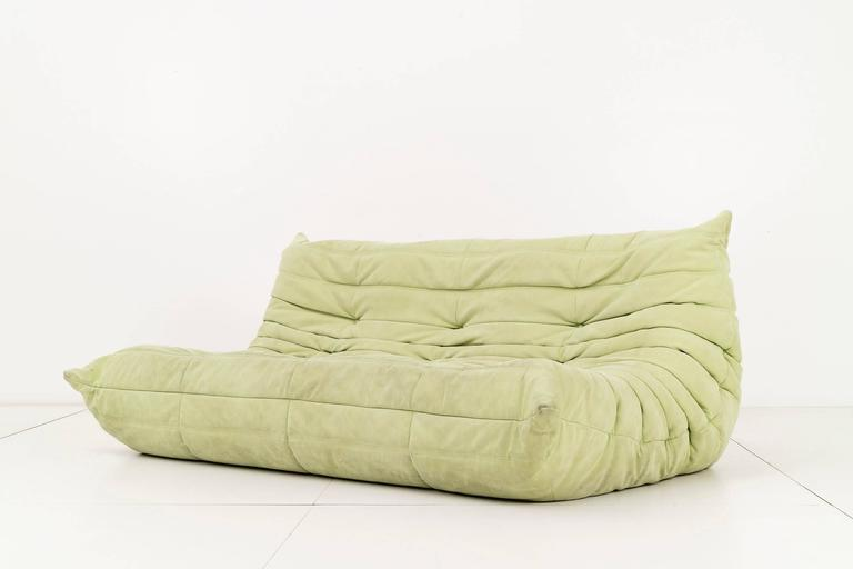 Michel Ducaroy for Ligne Roset. Pair of three-seat sofas upholstered in a faded lime suede. Original label on back [Made In France, Ligne Roset].