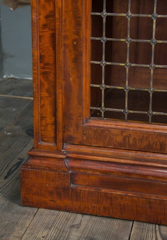 Fine Pair of William IV Mahogany Library Bookcases In Excellent Condition For Sale In London, GB