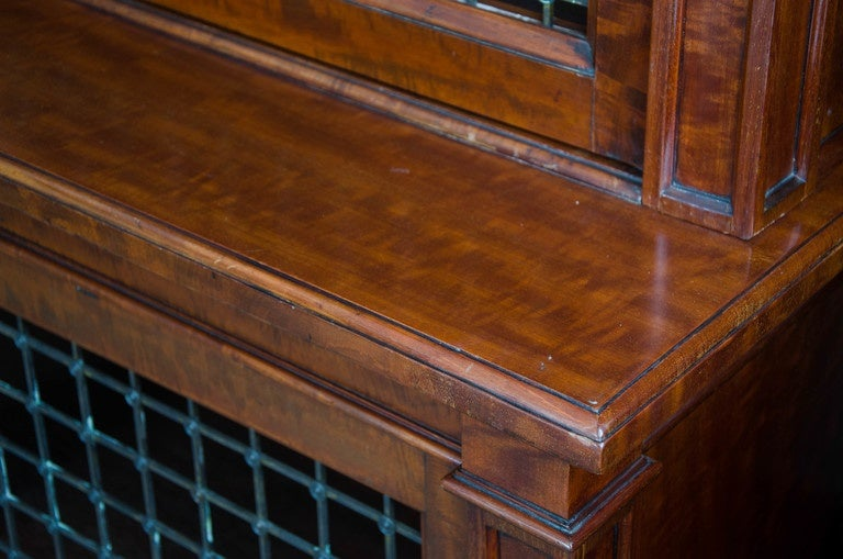Fine Pair of William IV Mahogany Library Bookcases For Sale 2