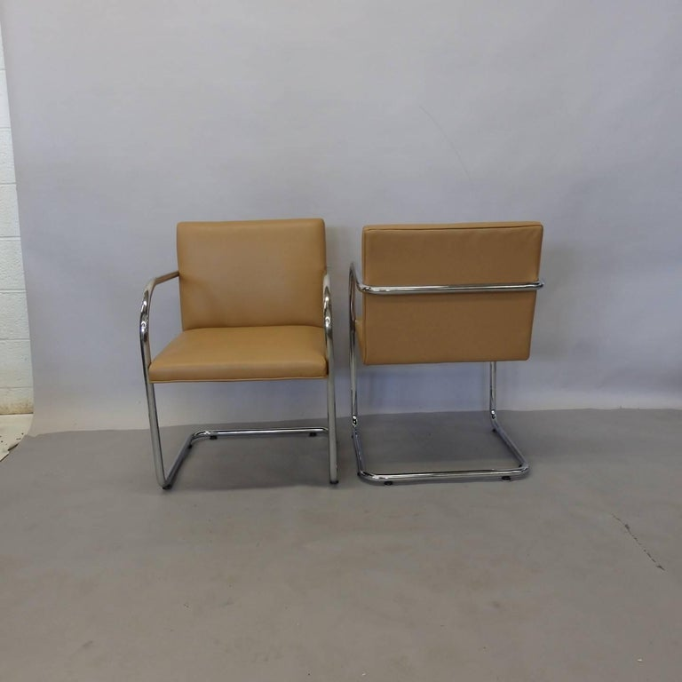 Four Knoll Mies van der Rohe Brno Chrome Tube Chairs For Sale 1