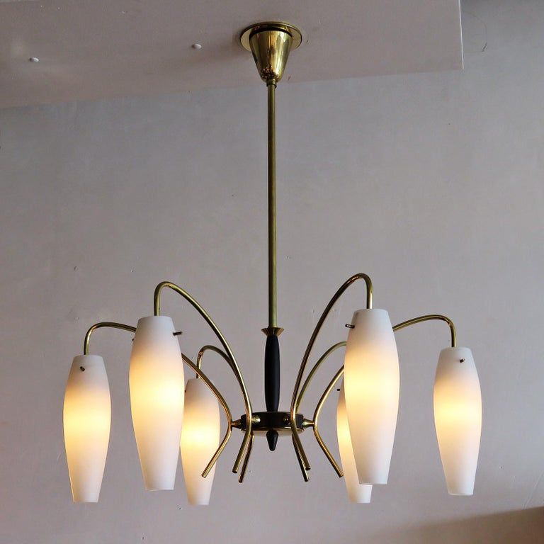 German Six-Light Chandelier, 1950 For Sale 2