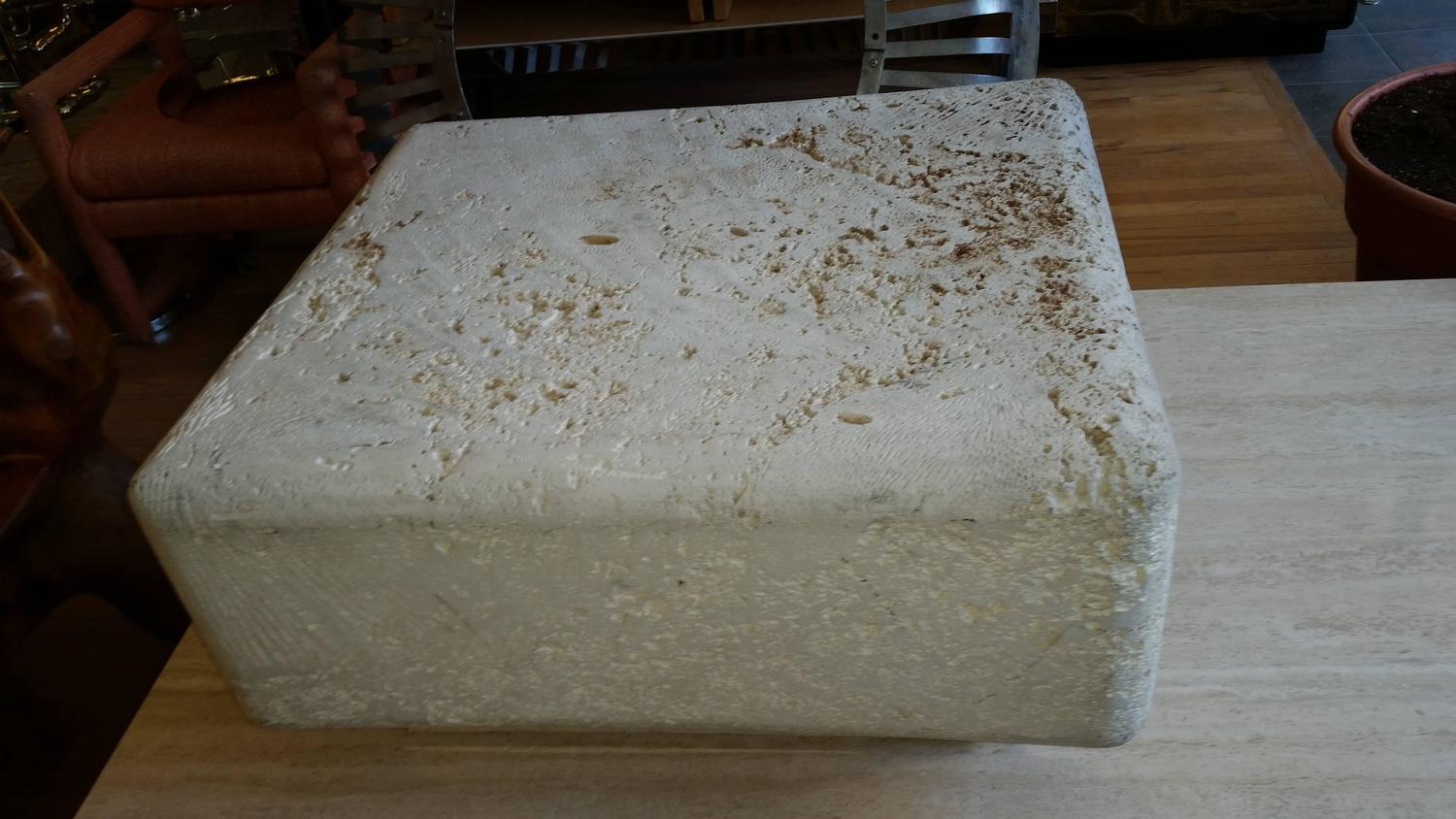 Natural Coral Stone Fossilized Coffee Table For Sale At 1stdibs