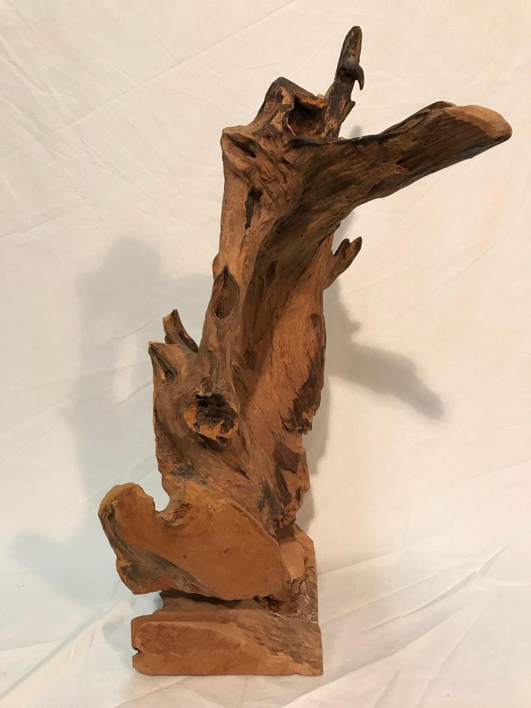 Pair of 1970s Era Steel Rod Mounted Driftwood Sculptures For Sale 1