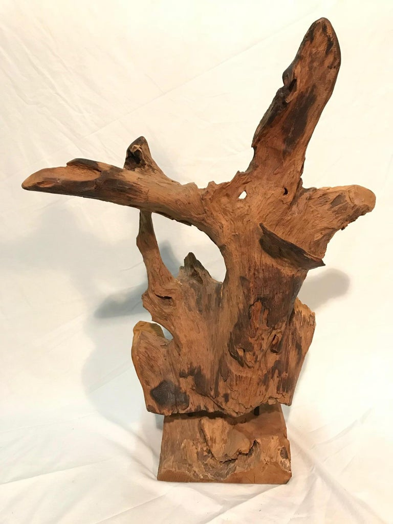 Pair of 1970s Era Steel Rod Mounted Driftwood Sculptures For Sale 2